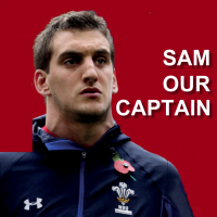sam warburton song