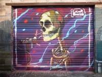 colour doomed singing skull